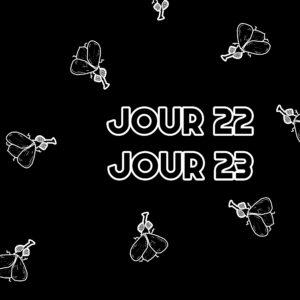 Jour 22 et 23 : Les mouches